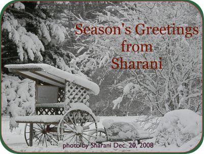 Season's Greetings - Dartmouth in the Snow